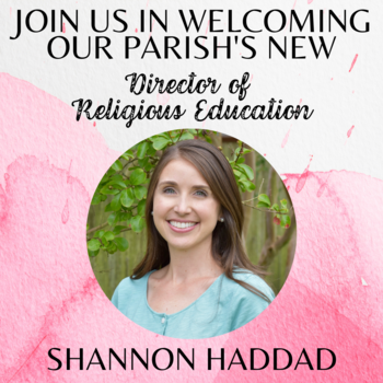 Announcing Our New DRE,<div>Shannon Haddad</div>