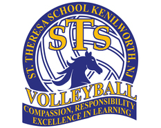 """STS Volleyball"""