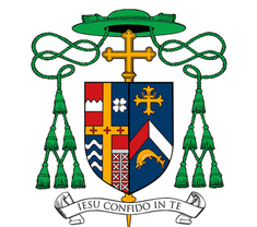 Bishop Stika offers statement on use of masks in diocesan Catholic schools