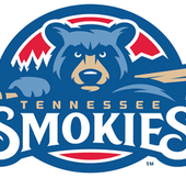 A Night at the Tennessee Smokies Baseball Game