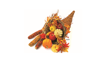 Social Action Committee - Thanksgiving Baskets