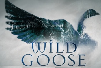 Formed 'Wild Goose' Series