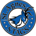 Support St. Agnes School