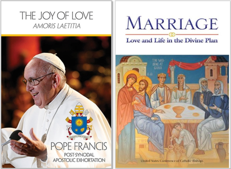 Image of the Joy of Love and Marriage: Love and Life in the Divine Plan books