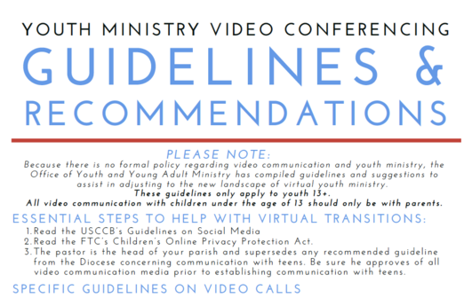 Video Conferencing Guidelines PDF