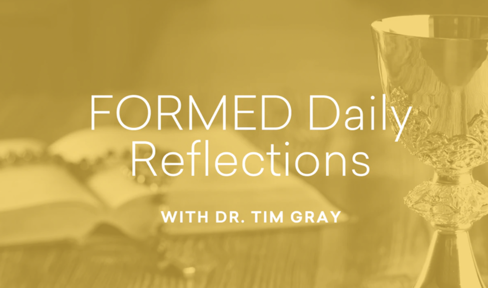 FORMED, Daily Reflections with Dr. Tim Gray,  Season 17