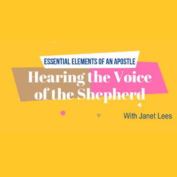 Essential Elements of an Apostle (RC Houston)