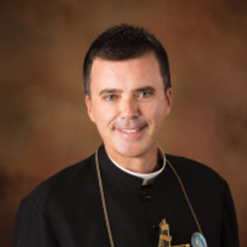 About Father Wade Menezes
