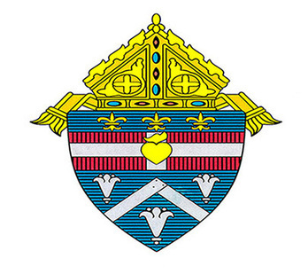 Diocese names new chief operating and financial officer