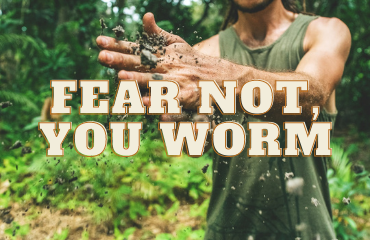Fear Not, You Worm | December 10