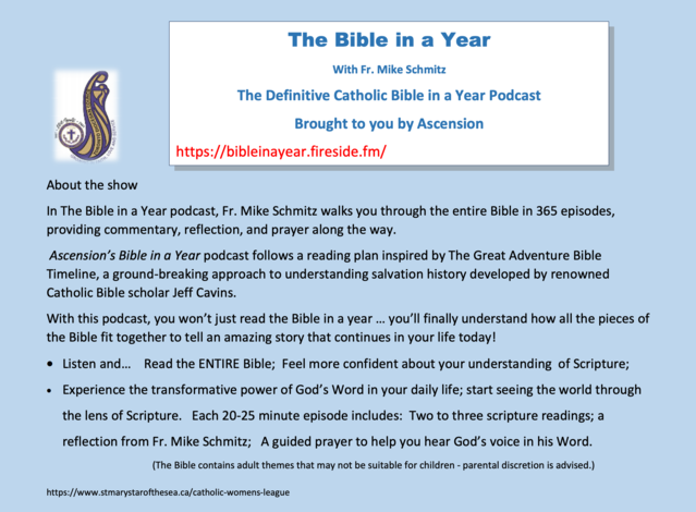 The Bible in a Year with Father Michael Schmitz Flyer