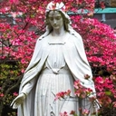 Bishops of USA and Canada consecrated their nations to Mary on May 1