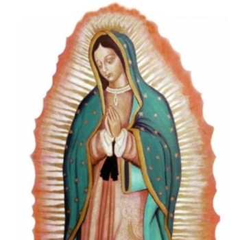 N.S. de Guadalupe Day