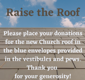 Please Help us Pay for our Roof!