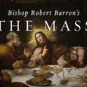 Bp. Barron's The Mass DVD Study