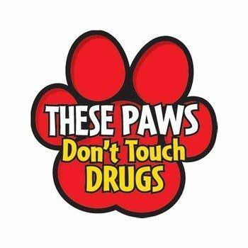 "Red Ribbon Week - ""Turn your back on drugs!"""