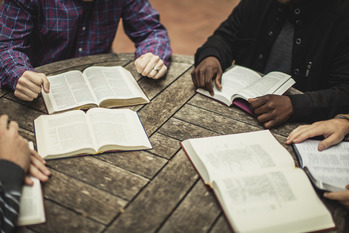 CATHEDRAL FALL SCRIPTURE STUDY
