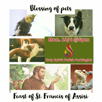 Blessing of Pets on the Feast of St Francis!