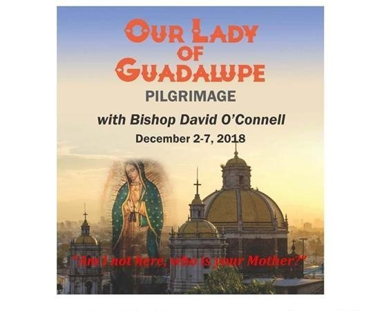 Pilgrimage to Basilica of Our Lady of Guadalupe