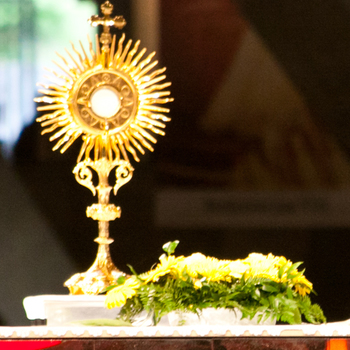 Eucharistic Adoration Cancelled