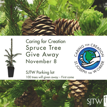 Caring for Creation Spruce Tree Give Away – November 8