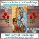 Novena & Celebrations of Our Lady of Guadalupe