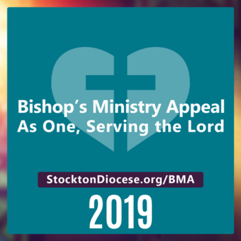 Bishop's Ministry Appeal (BMA) 2019