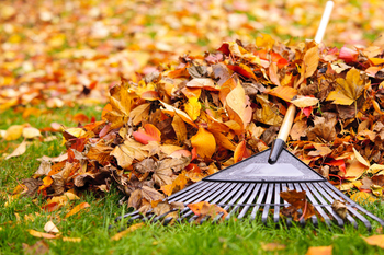 Annual Parish Leaf Raking - October 28