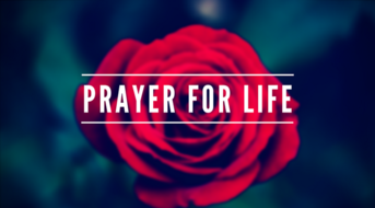 Wed. January 22- Day of Prayer for the Legal Protection of Unborn Children