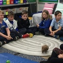 Third Grade Zoo Enrichment