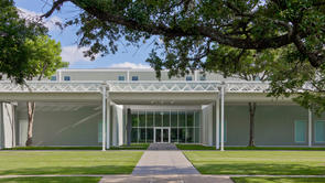 Guided visit to the Menil Collection and Museum of Fine Arts