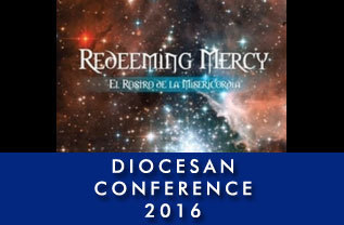 Diocesan Conference 2016