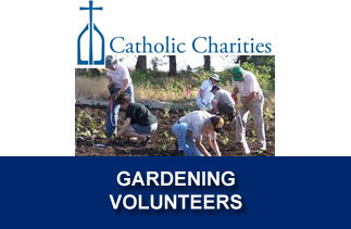 Call for Gardening Volunteers