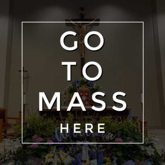 Go to Mass here