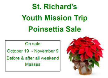 Youth Mission Trip Poinsettia Sales