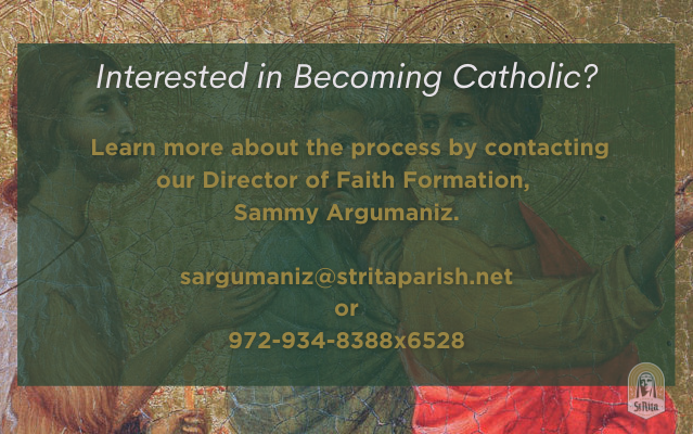 Interested in becoming Catholic?