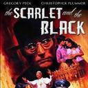 July 27, 2014 - Spiritual Ponderings - Faith & Film - Scarlet and the Black