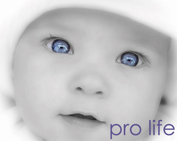 St. Thomas Pro-Life Baby Item Collection