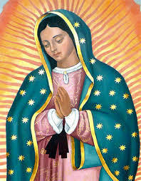 Our Lady of Guadalupe: Morning Events