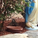 Mary's visitor