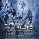 'Living the Gospel of Life'