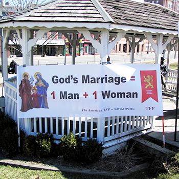 Traditional Marriage Crusade