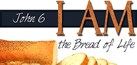 John, Chapter 6: The Bread of Life Discourse
