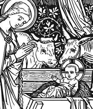 Nativity of Our Lord (Christmas)