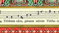 Why Use Latin in the Liturgy?