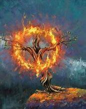 The story of the burning bush in today's first reading is a familiar one.