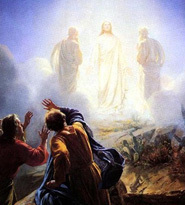 08.06.17: The Feast of the Transfiguration of the Lord