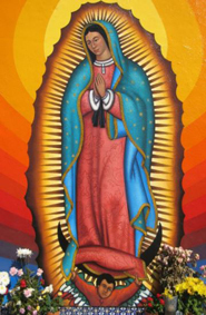01.06.18 to 01.29.18 Missionary Image of Our Lady of Guadalupe