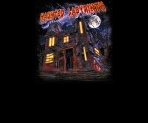 The Haunted Labyrinth