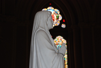 Bishop to renew the consecration of the Diocese to the care of our Blessed Mother